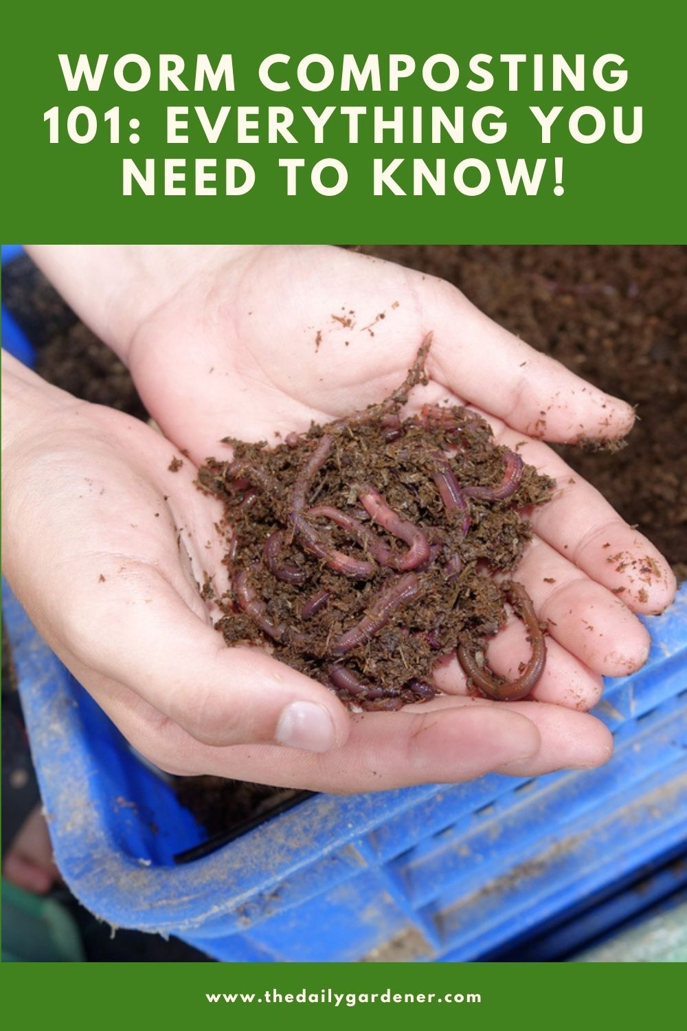 Worm Composting 101 Everything You Need to Know! 1