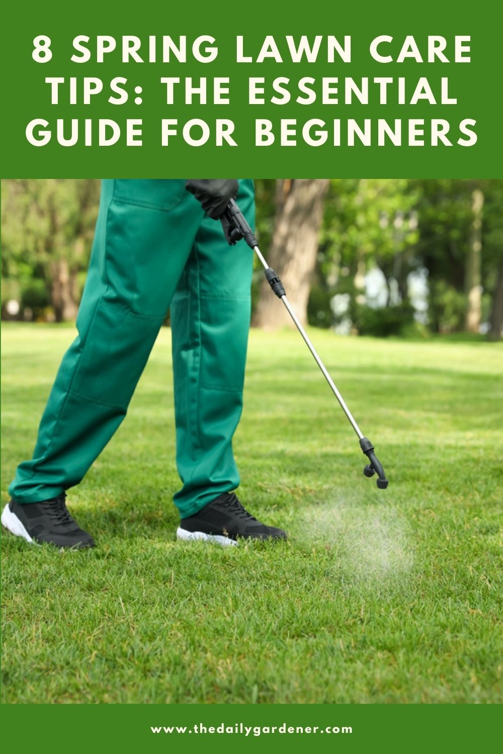 8 Spring Lawn Care Tips The Essential Guide for Beginners 1