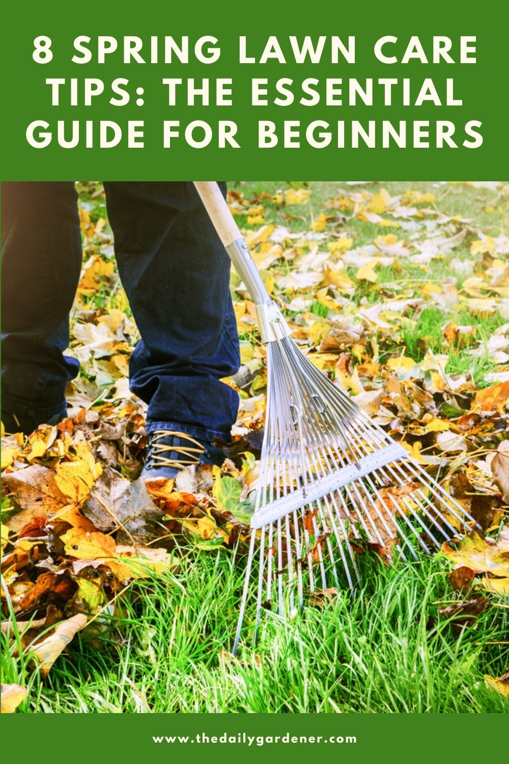 8 Spring Lawn Care Tips The Essential Guide for Beginners 2
