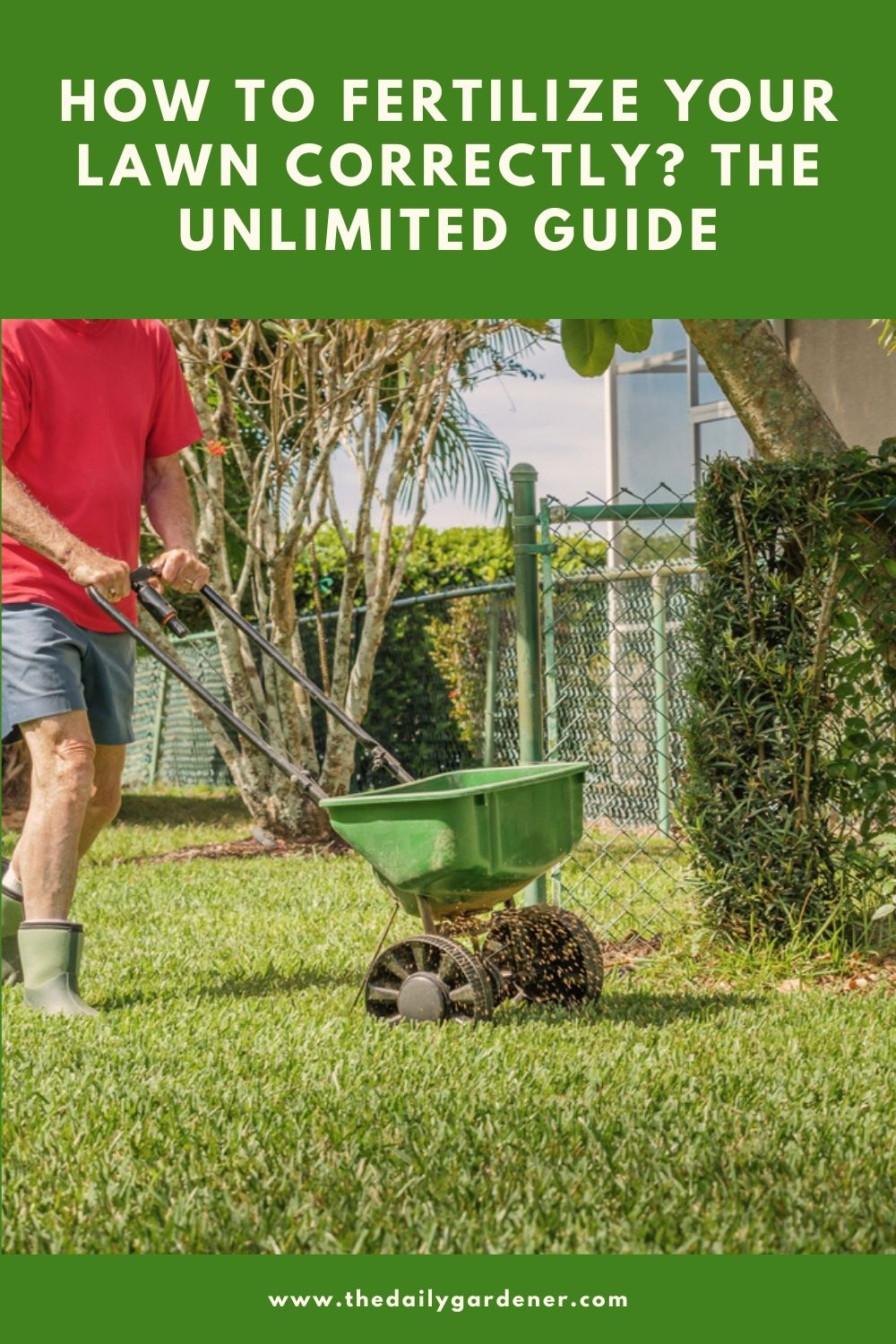 How to Fertilize Your Lawn Correctly The Unlimited Guide 2