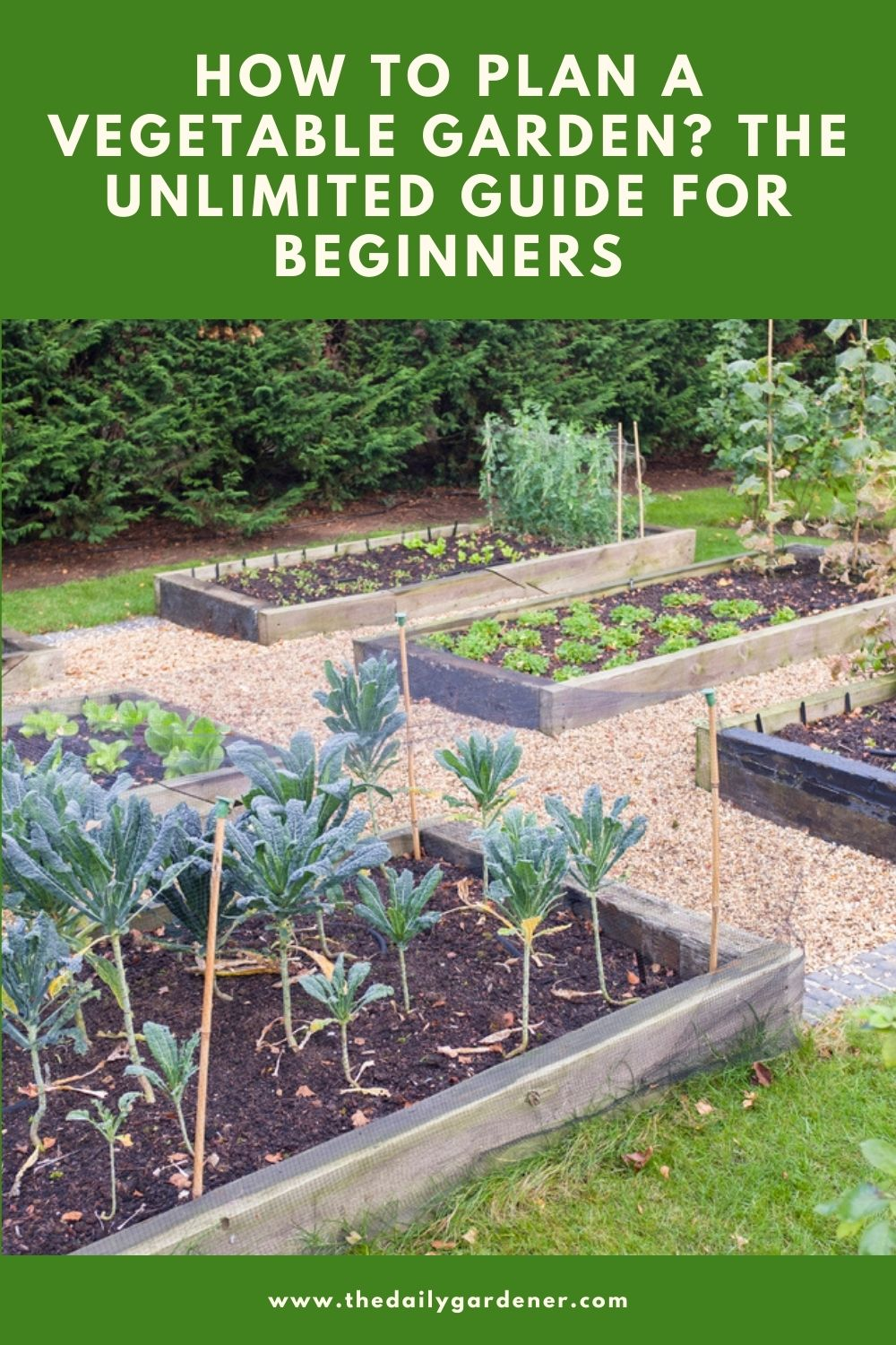How to Plan a Vegetable Garden The Unlimited Guide for Beginners 1