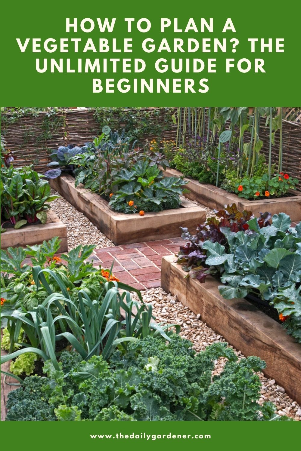 How to Plan a Vegetable Garden The Unlimited Guide for Beginners 2