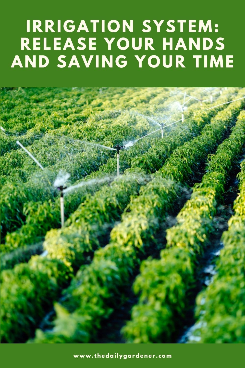 Irrigation System Release Your Hands and Saving Your time 1