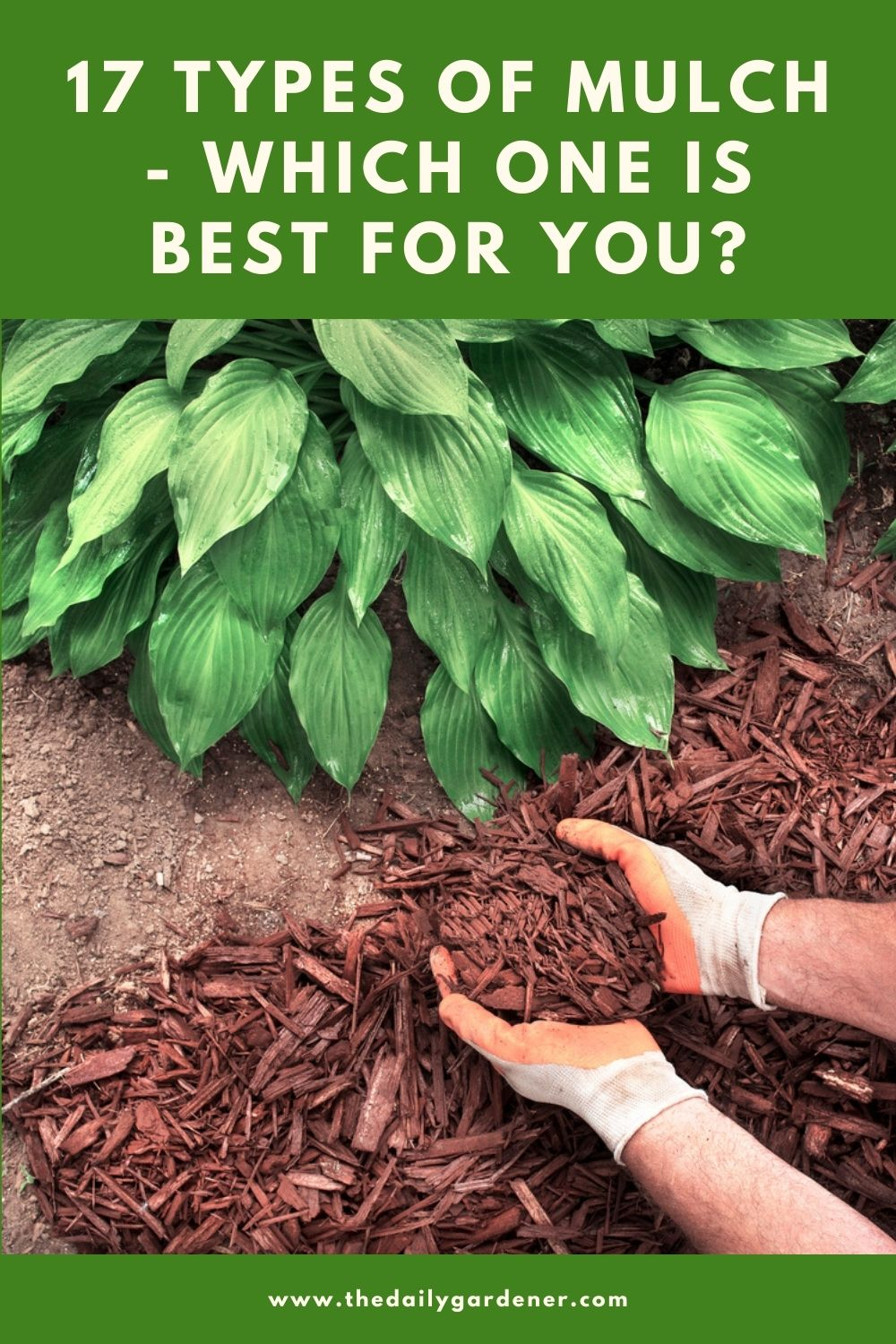 17 Types of Mulch - Which One is Best for You 2