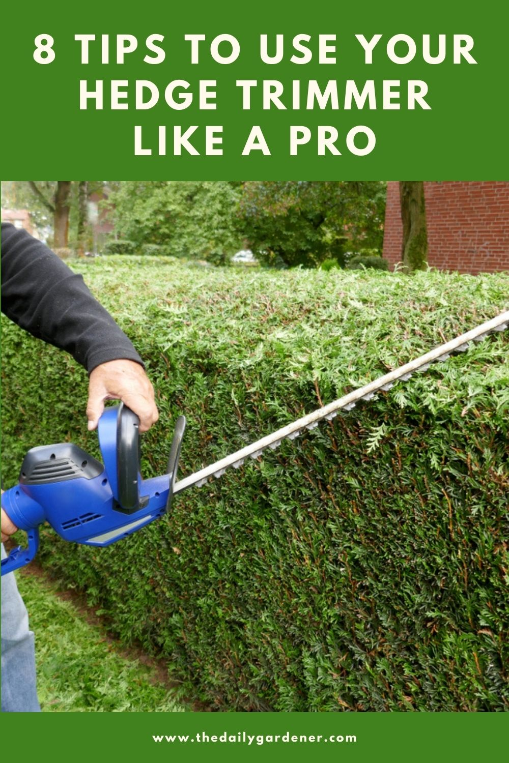 8 Tips to Use Your Hedge Trimmer like a Pro 1
