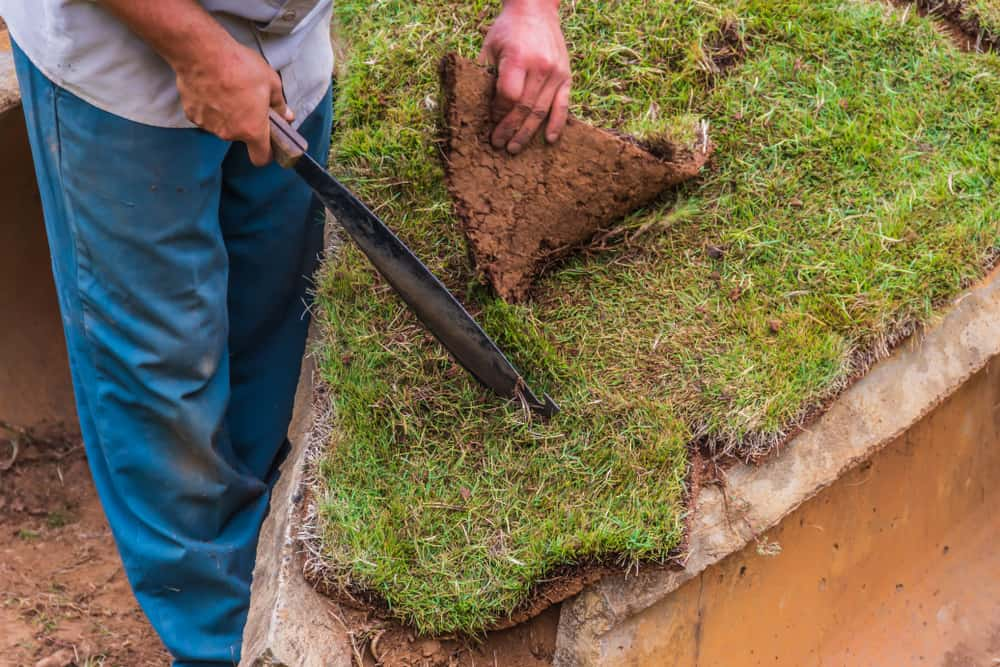 Organizing delivery and receiving your sod