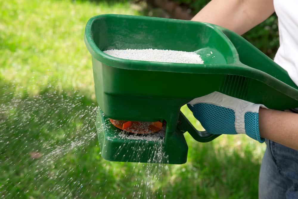 Drawbacks of Fertilizing Too Often