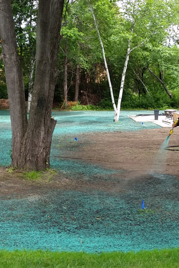 What Are the Advantages of Hydroseeding