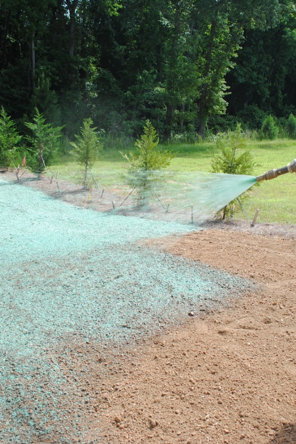 What Are the Limitations of Hydroseeding