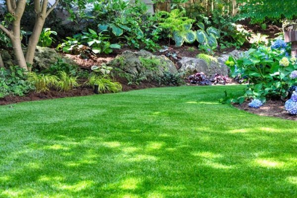 8 Tips to Make Your Grass Greener