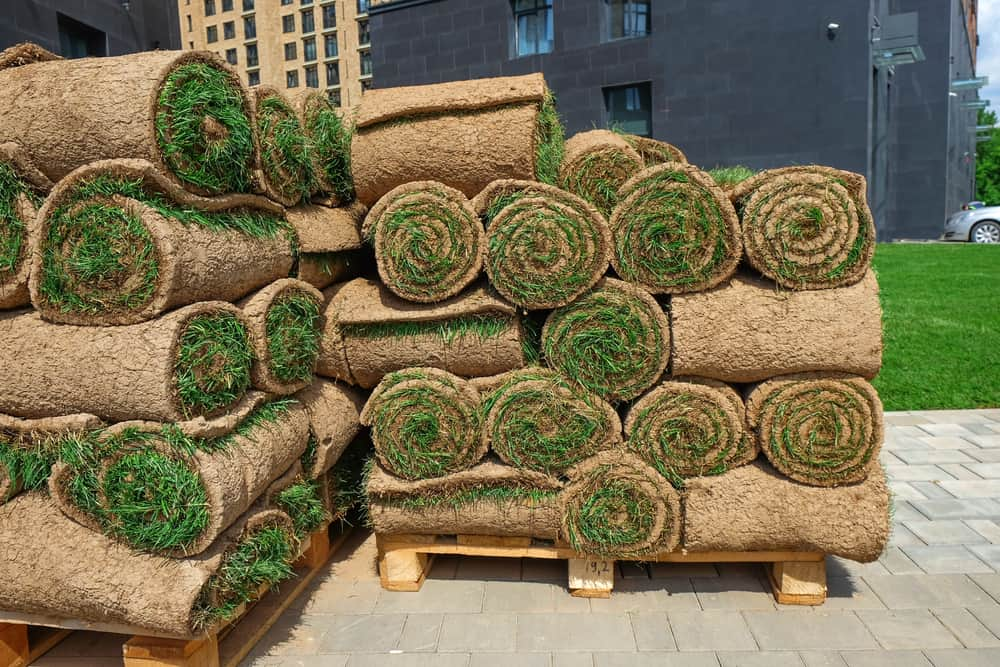 How Much Does A Pallet of Sod Weigh (Exact Answer)