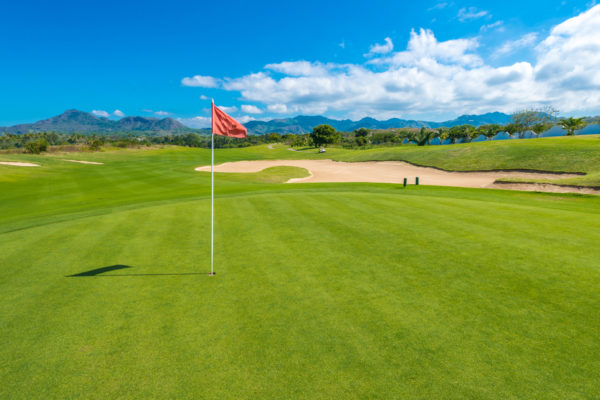 4 Types of Golf Course Grass: Which is Better?