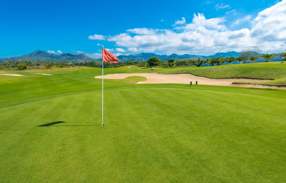 Types of Golf Course Grass