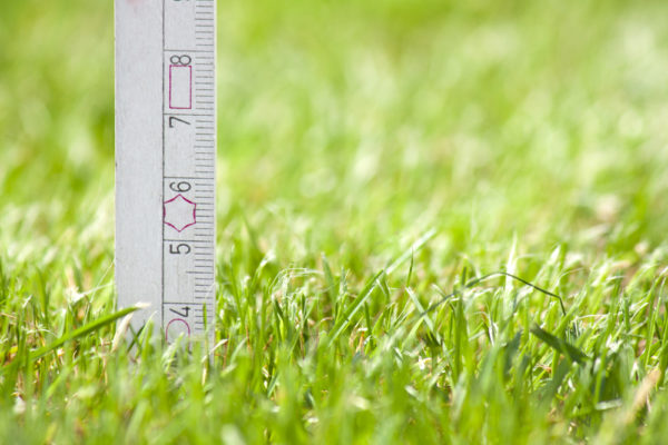 How High Should I Cut My Grass? (Ideal Height by Type)