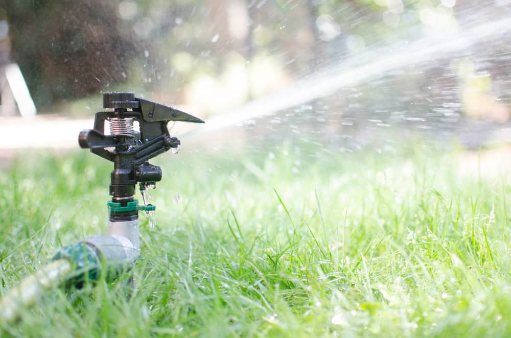 How to Tell If the Grass is Under-Watered