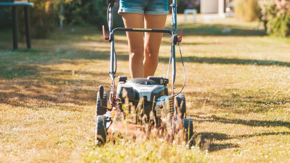 Lawn Mower Problem