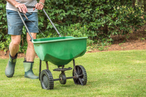 How to Tell If Your Lawn Needs Lime? (6 Signs)